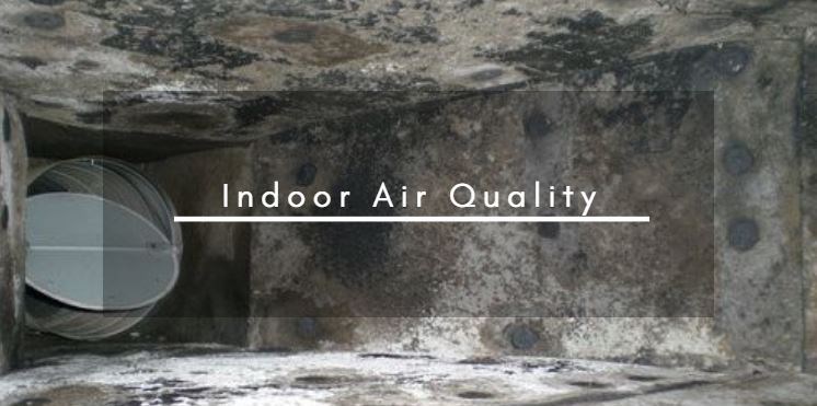 Raleigh Indoor Air Quality