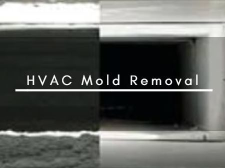 HVAC Mold Removal